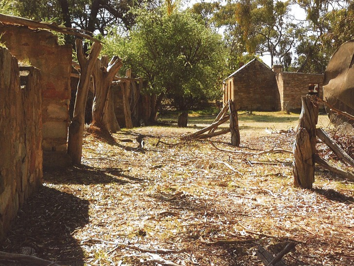 Ruins of an extensive farming settlement at Bundaleer Gardens on Never Never Creek. They included a main house, a partly underground cellar, and barns and sheds. This evocative place was a testimony to the hard work of the early settlers.