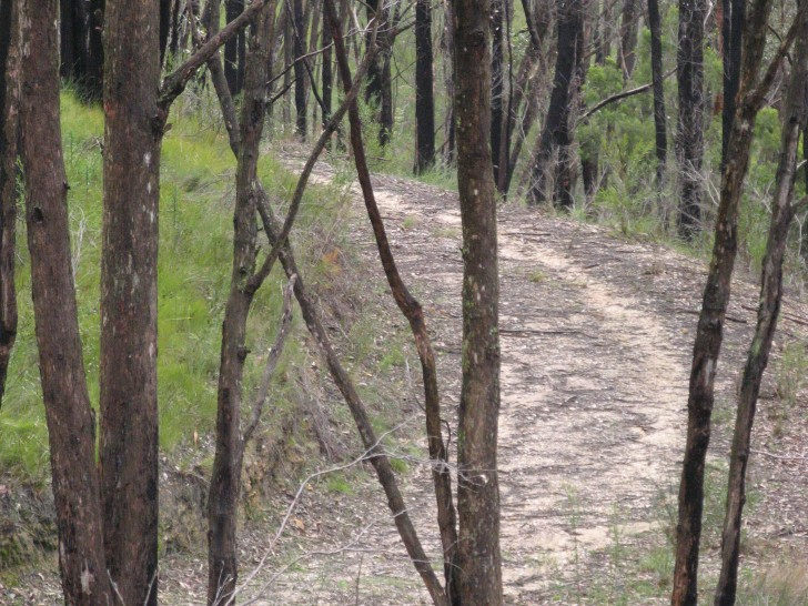 Sea to Summit Trail meanders through Cleland Conservation Park