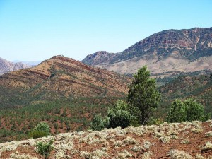 Proposed Heysen Trail Realignment in Flinders Ranges Draft Management Plan – Have Your Say
