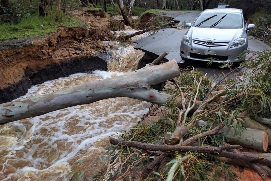 Adelaide Hills flood damage closes some walking trails.