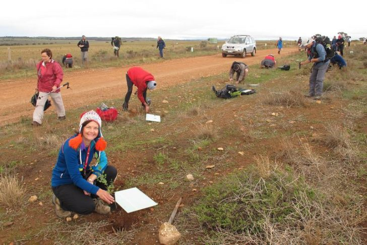 It's Volunteer Week — huge thanks to everyone that volunteers within the Friends of the Heysen Trail.