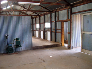 Interior of shearing shed