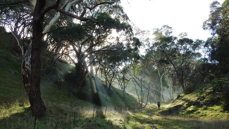 Section 16: Mewett Road to Mt Crawford