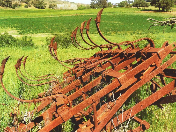 Old scarifier located at Yandowie on a rich and very productive part of Never Never Creek. The remains of such agriculture equipment (the ploughs that broke the plains) are found at intervals along the trail and are constant reminders of the agricultural heritage of the area.