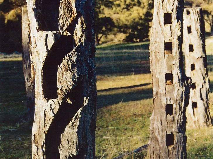 These wonderful bush posts were part of what we called Woodhenge, the remains of a large stock yard on the south side of Mount Brown in the beautiful woodland at the headwaters of Mount Brown Creek.