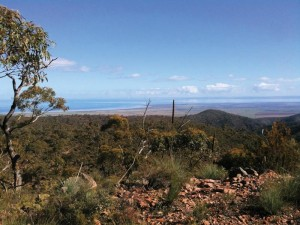 Wirrabara Forest views - Heysen Trail through Wirrabara Forest to Reopen