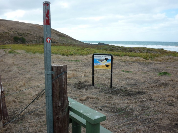 Hooded Plover signs on Heysen Trail