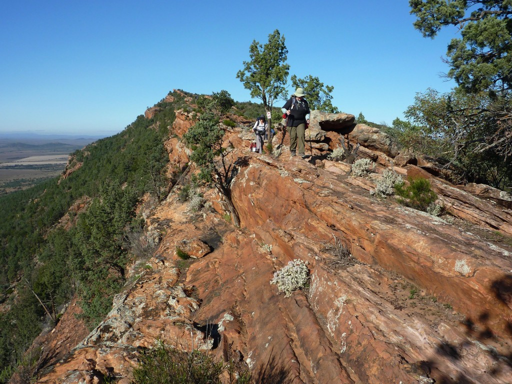 Survey on the Best Walks of South Australia