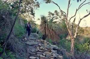 Re-Route of Heysen Trail near Trig Campsite to Deep Creek Waterfall (2)