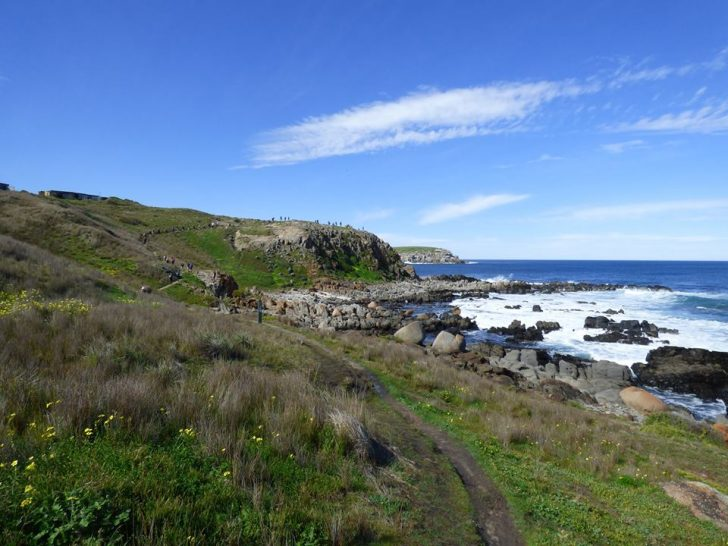 The Heysen Trail near Kings Beach - photo by Martin Chapman.
