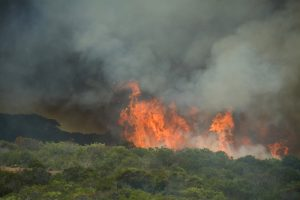 Heysen Trail closure dates announced for Mt Lofty Fire Danger Season – 2020/21