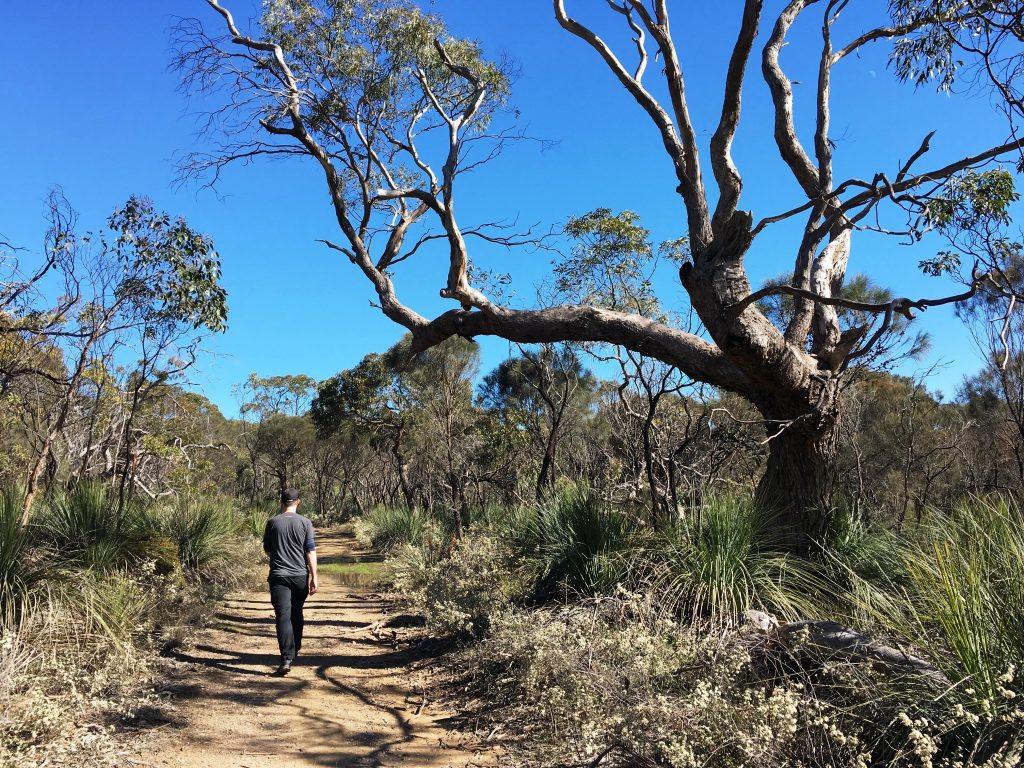 Heysen Trail open for day walking only after Fire Danger Season ends in April